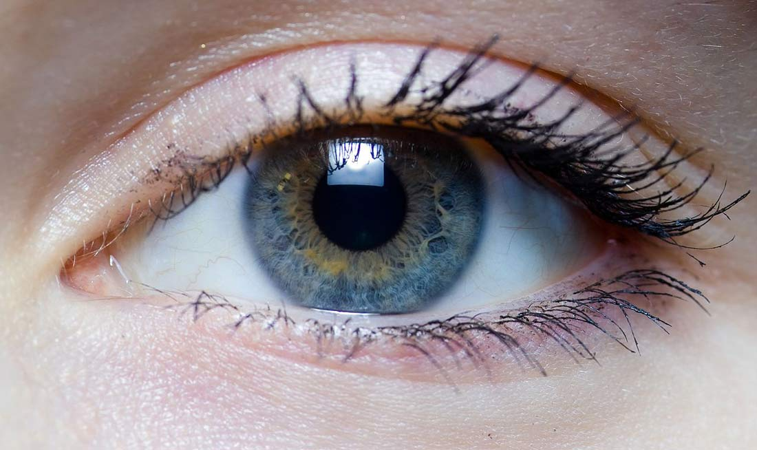 Iris - right eye of a girl by Wikimedia